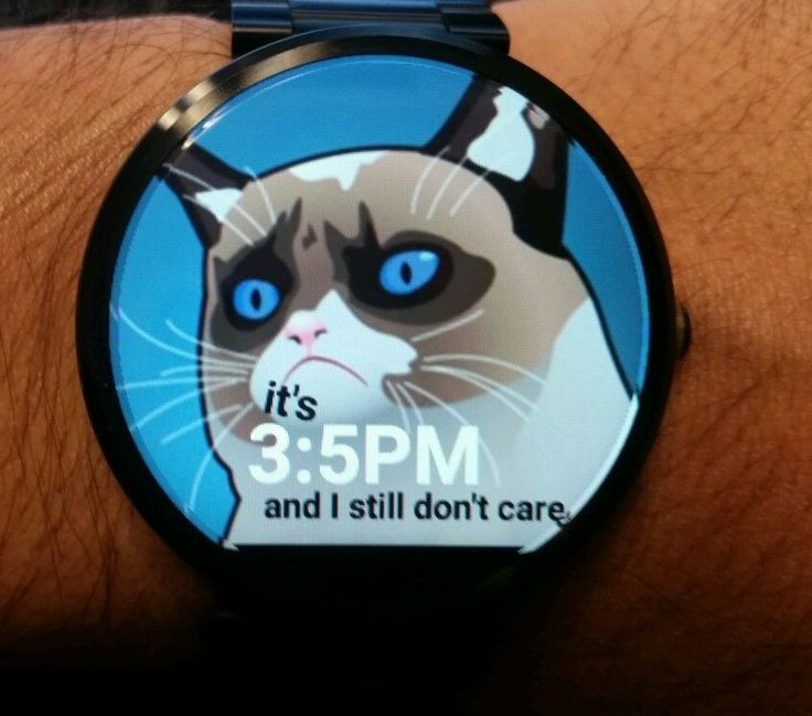 Funny Cat 5-pack of Moto 360 digital watch faces in Cell Phones & Accessories | eBay
