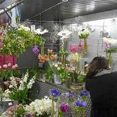 Rolande votre fleuriste aux halles de Narbonne sera heureuse de vous accueillir dans son étal de fleurs. Rolande vous propose de beaux bouquets de fleurs fraîches, des compositions florales contemporaines et champêtres. Offrir des fleurs c'est un symbole délicat et sensible, un bouquet de fleurs est un cadeau rêvé pour transmettre gracieusement votre infinie tendresse. Ouverture de l'étal de 8h00 à 14h00.aux Halles de Narbonne à deux pas de la mairie et du canal de la Robine.