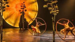 """Image copyright                  Cirque du Soleil                  Image caption                                      A Cirque du Soleil technician on the touring production of """"Luzia"""" was killed while setting up for a performance in San Francisco.                                The son of one of the founders of Cirque du Soleil has died in an on-set acciden"""