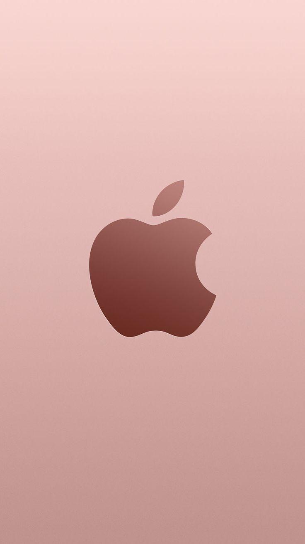 Everything Apple.