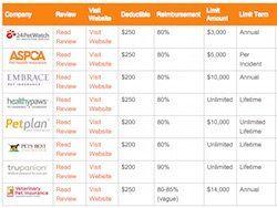 Pet Insurance Quotes Comparison Table