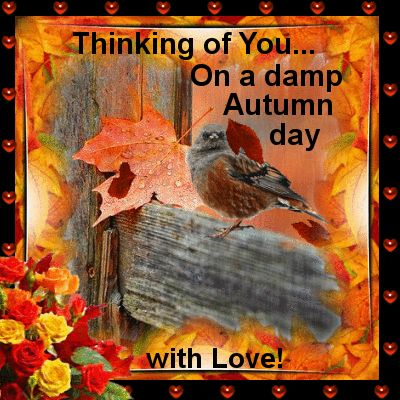 Autumn Sept 23rd 21st Dec/Friends U0026 Family Section. Send This Ecard To