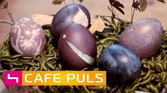 Café Puls - YouTube