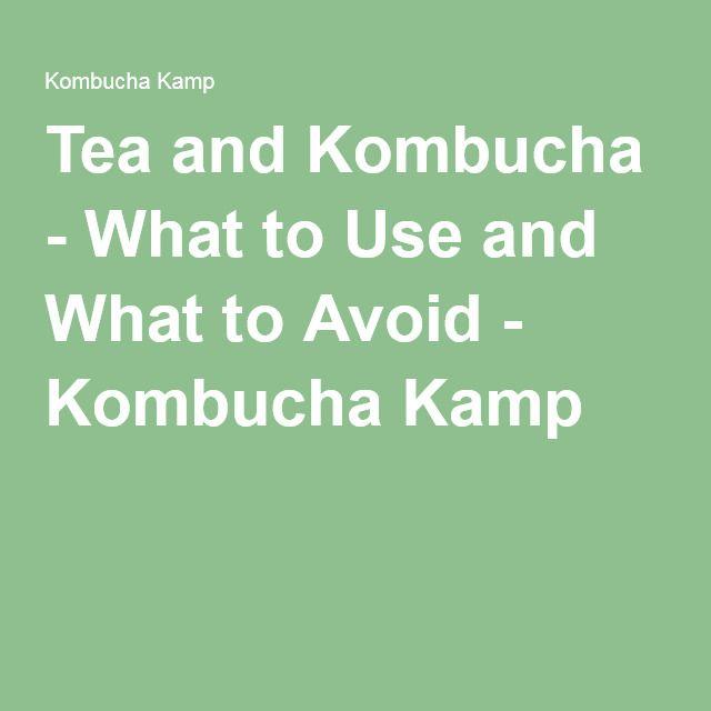 Tea and Kombucha - What to Use and What to Avoid - Kombucha Kamp