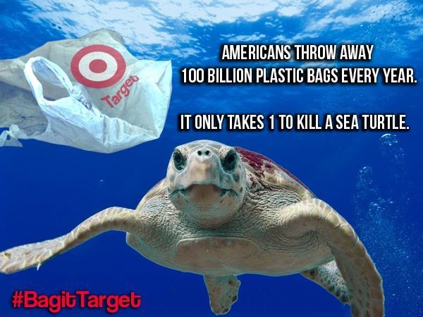 152 Best Plastic Pollution Images On Pinterest Plastic
