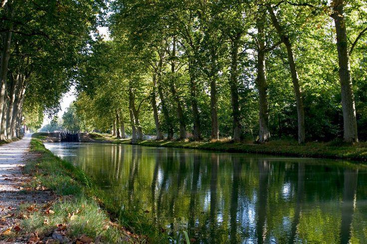 De Toulouse à Sète en passant par Marseillan et Carcassonne,  241 kilomètres à l'ombre des platanes, le long du Canal du Midi.