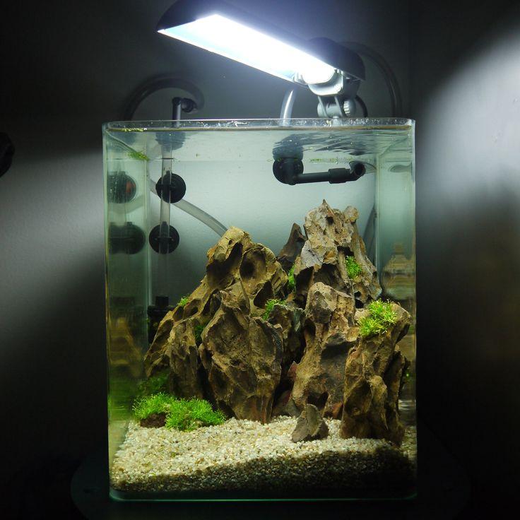Le Baou  - Nano Aquascaping