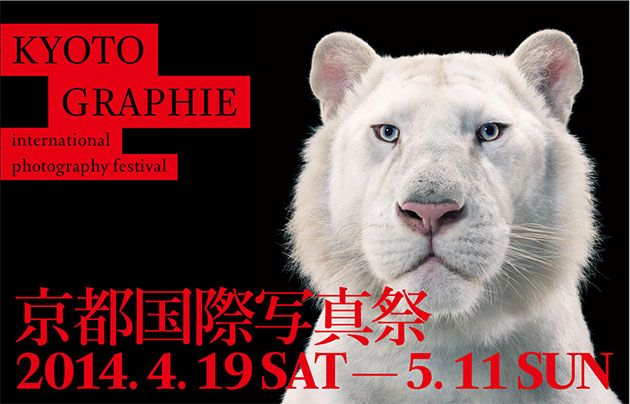 京都国際写真祭もうすぐ。
