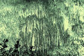 Pascal Hallou peintures photos : Sigma