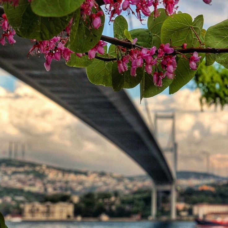 Beylikdüzü, İstanbul