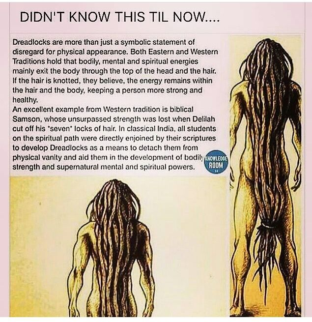 Not quite, Dreadlocks are a purely a thing from the African continent and diaspora, since tight coils are the only think that will hold the locks. What you're thinking of are plaits, which are more suitable for straight hair.