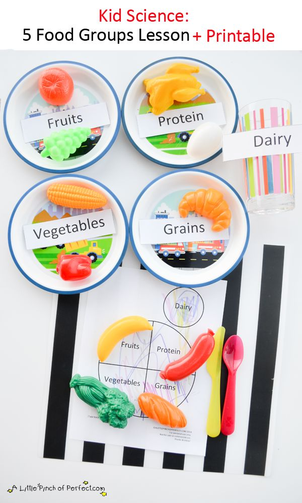 A Little Pinch of Perfect: Science for Kids: Learning about the 5 Food Groups + Printable