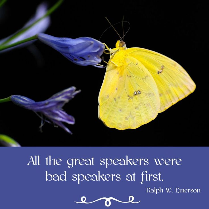 6 Inspirational Quotations to Improve Your Public Speaking