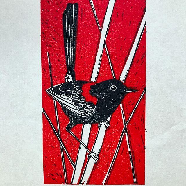Linoprint red backed fairy wren