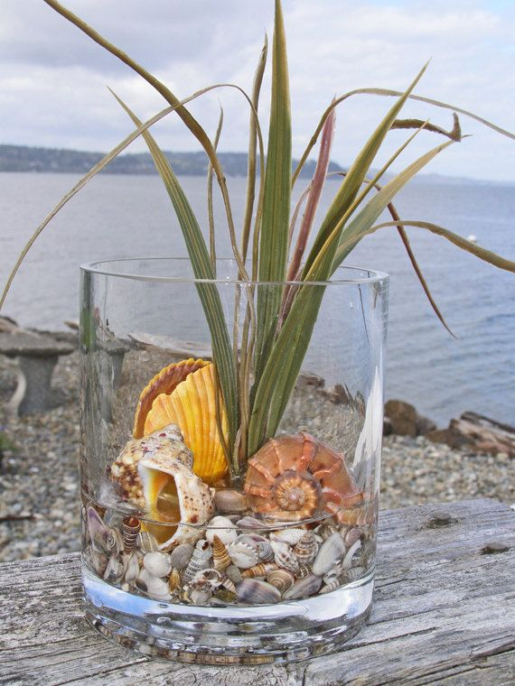 SEASHELL BEACH DECOR in glass in yellow -- the 2013 'hot beach color! by justbeachynow on Etsy