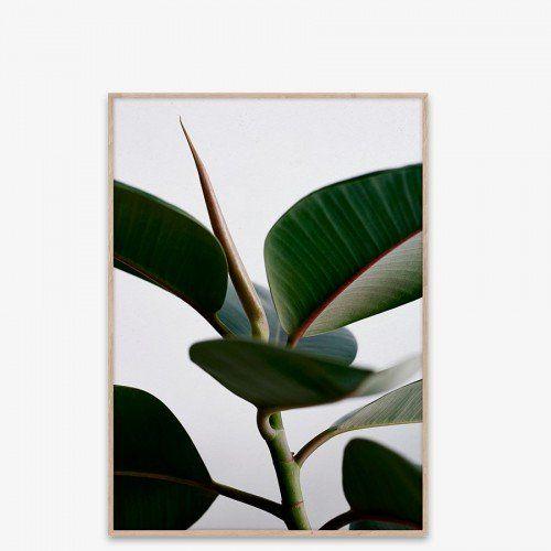 Plakat Green Home 02 50x70 cm - Plakater, rammer og kort - Plakater, bøker & elektronikk - Interiør | Bolina livstilsbutikk - interiør, klær og tilbehør.