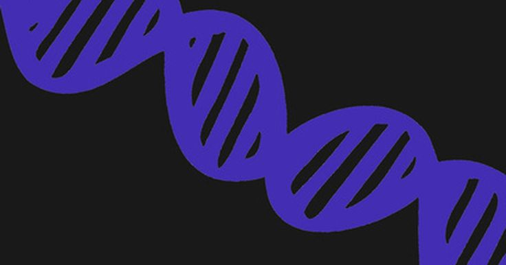 Los usos del ADN recombinante. A lo largo de los últimos 100 años, el conocimiento de la genética ha crecido exponencialmente. Hoy en día, los científicos se han visto beneficiados con los años de investigación y están explorando con éxito el campo de la ingeniería genética. Combinando el ADN de dos organismos distintos con la técnica del ADN recombinante, son posibles muchos ...