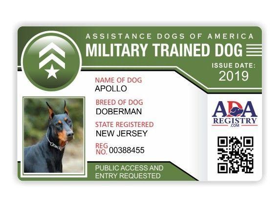 Military Service Dog Registration Assistance Dog Emotional