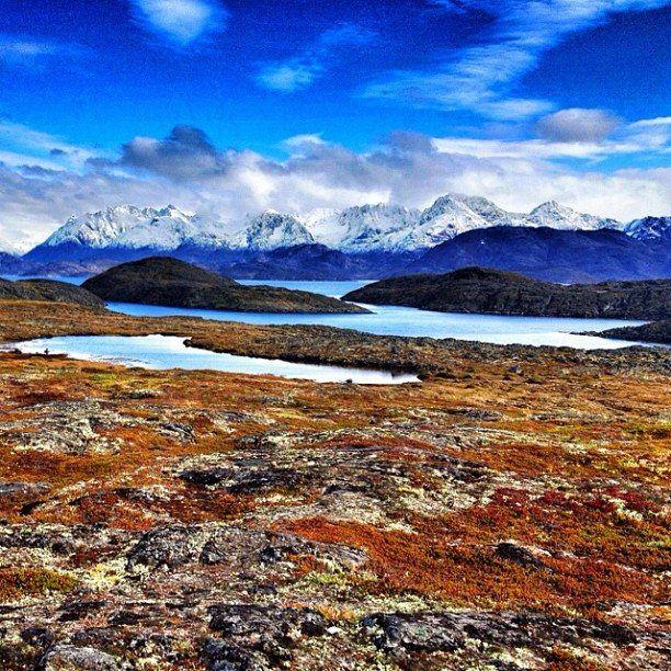 картинка арктические почвы обои