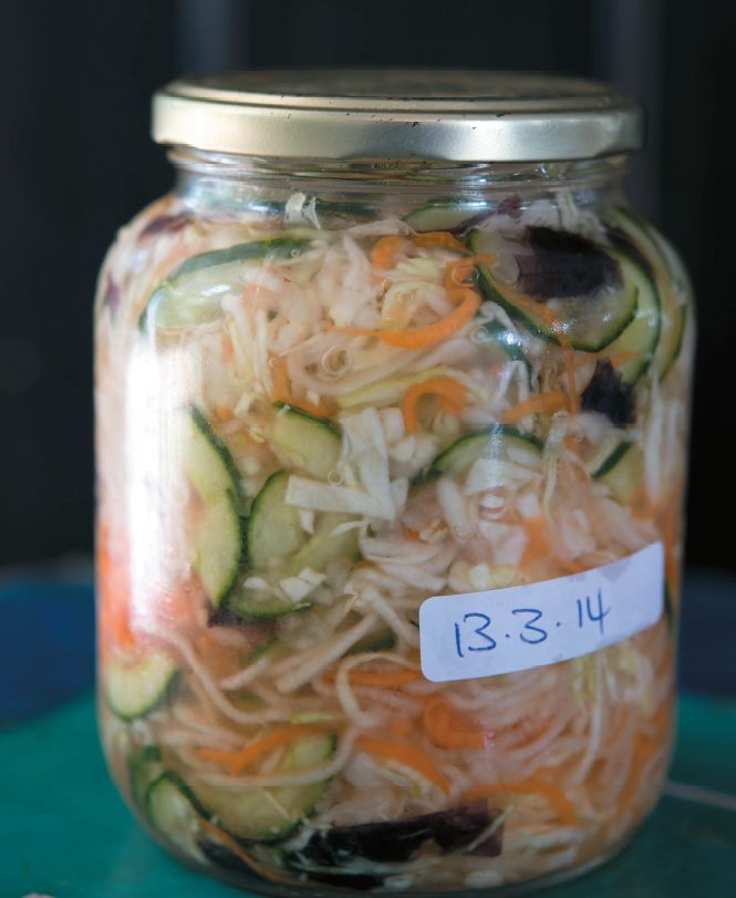 """Fermented food are said to add microbes to the gut. Many people eat fermented foods to get a supply of live """"good"""" bacteria. Recipe on my website."""