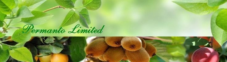 PERMANTO exports of processed fruits as kiwi, citrus, cherries, peaches, grapes. These are the principal fruits exported.