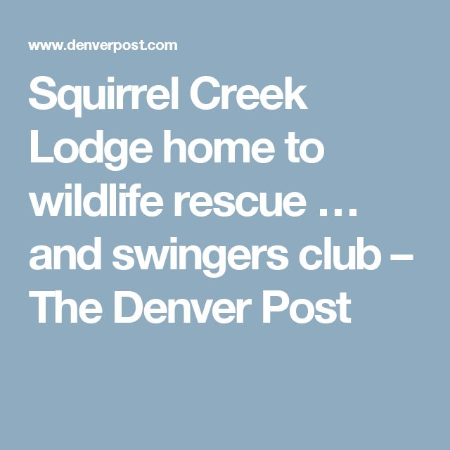 Squirrel Creek Lodge home to wildlife rescue … and swingers club – The Denver Post