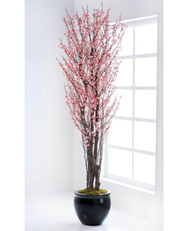 "{$tab:description} Add the perfect finishing touch Gracefully, the delicate blossoms of our silk cherry blossom tree render the natural beauty of new growth. Capture the refreshing feeling that spring delivers for seasonal or year-round enjoyment. Available in pink and white. {$tab:DETAILS}  6' Height x 28"" Width  Natural Wood Trunks Available in 2 Colors - Pink and White  Arrives Fully Shaped & Ready to Display  Decorative Container and Container Top Optio..."