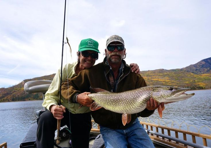 Fly fishing for pike vallecito pike monster our for Pike fishing colorado