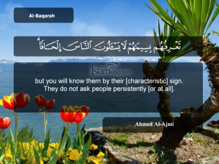 Quran translation: http://en.islamkingdom.com/QuranTrans?sura=2-aya=1 #quranreading