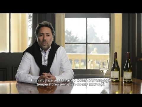 Marques de Casa Concha Chardonnay - YouTube