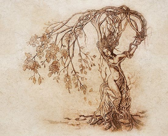 The Hedge Witch - A solitary herbalist and healer, who lived at the (h)edge of town. Spiritual, usually accompanied by birds. Describes my great-great-great-grandmother exactly.