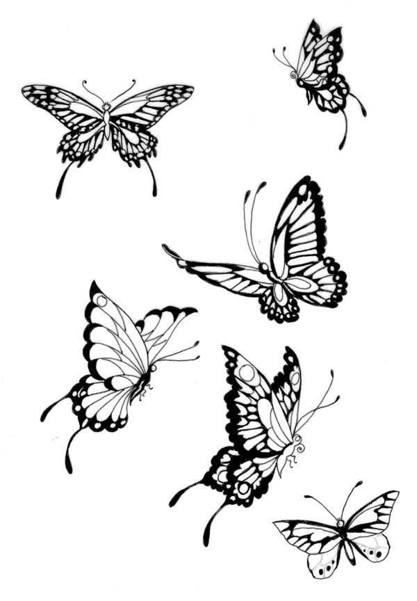 butterfly positions