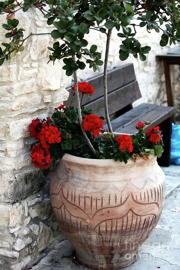 Agios Neofytos, Paphos, Cyprus, Greece