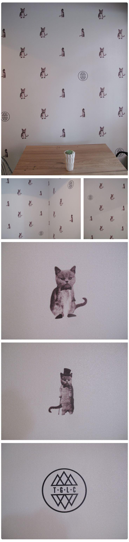 Cat WallpaperNurseries Decor, Kitty Cat, Club Wallpapers, Luck Club, Kitty Wallpapers, Kitty Kat, Good Luck Cat Wallpapers, Paper Wall, Fancy Kitty