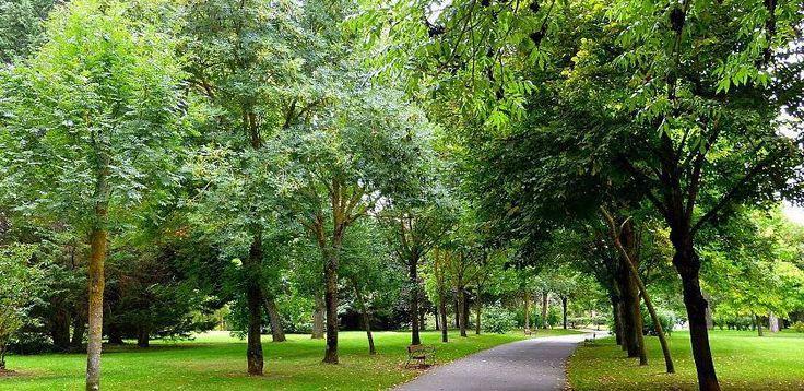 Relajante viaje por Vitoria - http://www.absolutvitoria.com/relajante-viaje-por-vitoria/