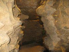 長崎西海市の鍾乳洞七ツ釜鍾乳洞  全国的には鍾乳洞は山口のほうが有名だったりするのですが実は山口にもあるんです そして国指定の天然記念物です   通常の観光コースがありますがちょっと気合を入れて未公開の地底探検ツアーに参加するっていうのもいいかも 予約が必要でしかも服が汚れちゃうようなところを探検します  そういえば昔たまに停電しますなんてさらっと怖い注意書きが書かれてたのを覚えてますがいまでも停電するんでしょうか( ;;)チョットコワイネー   tags[長崎県]