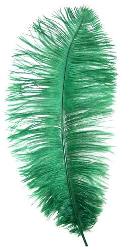 .. green feather ..