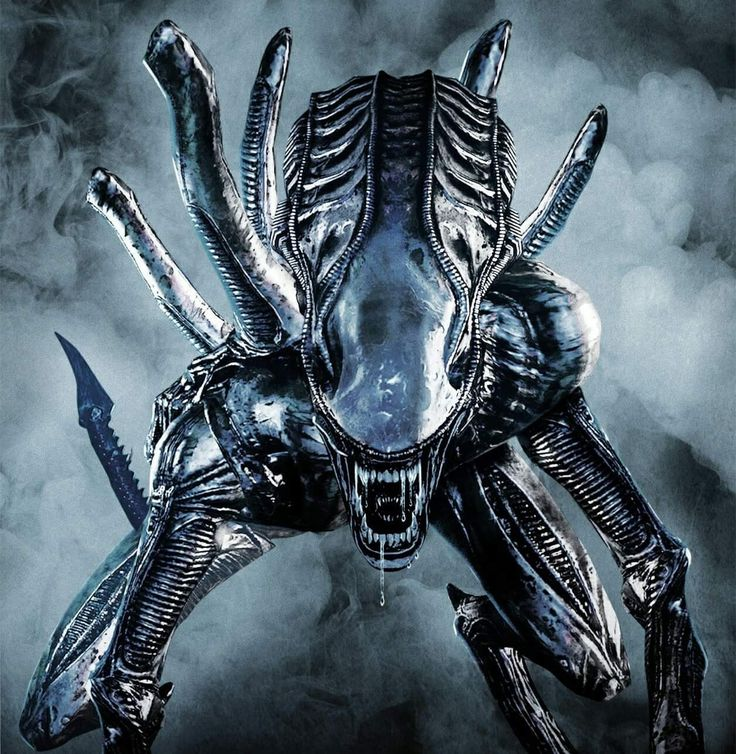 Alien 3 Movie: Best 25+ Xenomorph Ideas On Pinterest
