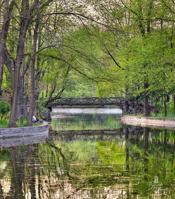 The wonderful, magical Cismigiu gardens