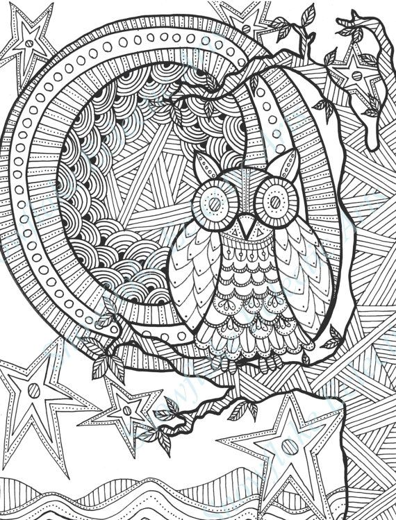 Owl Animal Tier Animale Animales Koka Dyr Dierlijke Kissa Coloring Page Printable Adults Prontable Kleuren