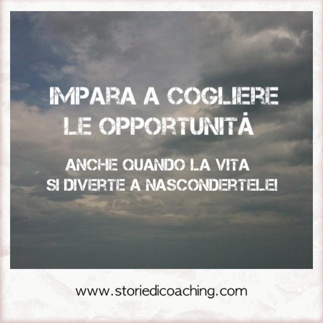 Impara a cogliere le opportunità  anche quando la vita si diverte a nascondertele!