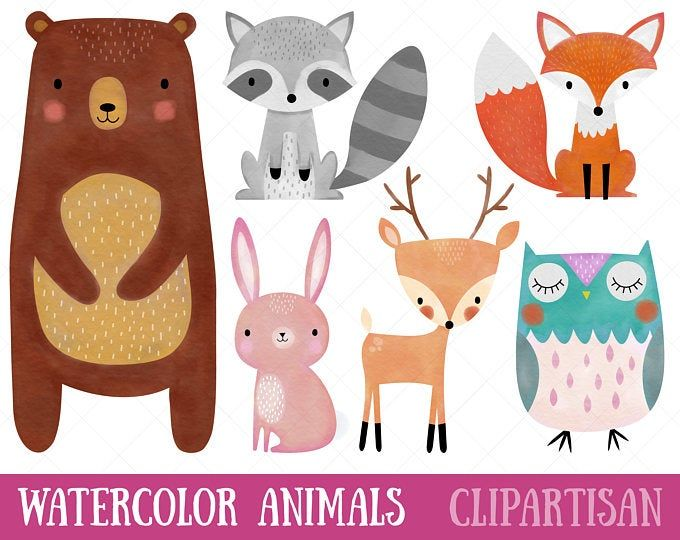 Woodland Baby Animals Clipart Forest Animal Clipart Etsy In 2021 Animal Clipart Nursery Decor Printables Woodland Animals