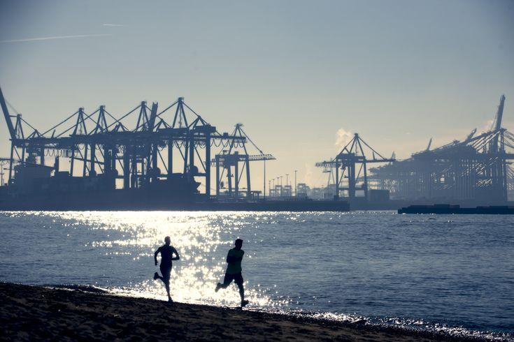 Jogger by Daniel Cramer #jogger #jogging #sport #fit #hamburg #harbour