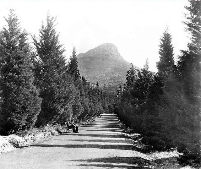 Upper Avenue De Waal Park Cape Town Looking To Lion's Head 1898 | Flickr - Photo Sharing!