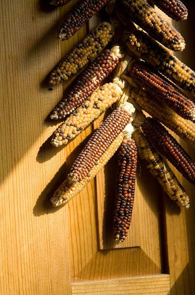 Indian Corn Door Hanging | DIY Ideas for Indian Corn To Decorate Your House This Fall