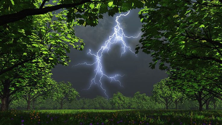 nature scenes | File Name : Nature Night
