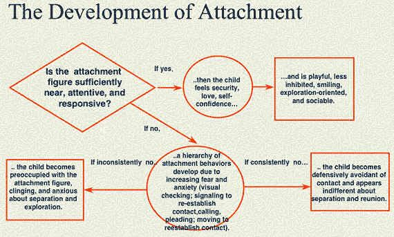 Atttachment Flow Chart. Would like to see another one showing relationships as they develop with a child with attachment issues.