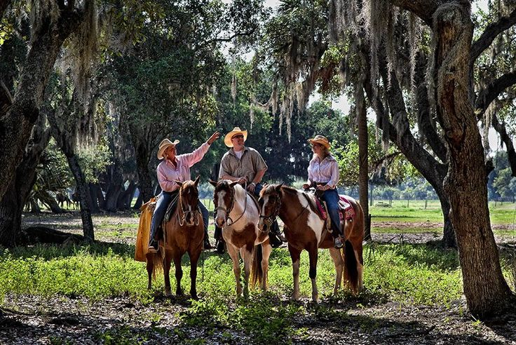 I'm gonna break out my inner cowboy! 3 days and 2 nights with 2 tickets to the Professional Rodeo at Westgate River Ranch Resort. They've got horseback riding, Airboat rides, Archery, Boat Rentals, Dinner Hayrides, Golf, Fishing, Mechanical Bull, Petting Farm, Rock Climbing,Trap & Skeet Range, a zip line and more! 0_0 Yee-haw!