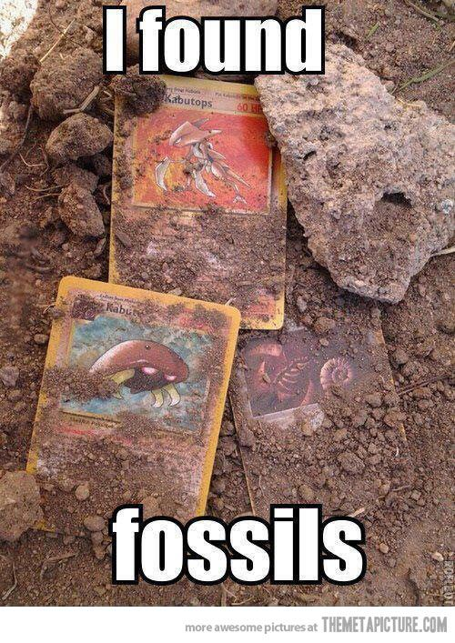 This fossils are so old. I have to handle them carefully... lol