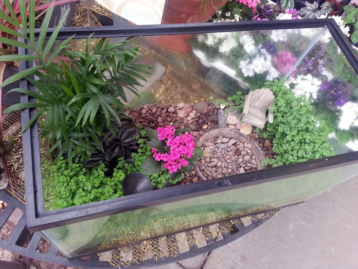Repurpose your fish tank with a fairy garden!  This one was designed in store by Stauffers of Kissel Hill's Garden Center experts. Learn more at www.skh.com